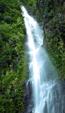 Une cascade de Tiarei à Tahiti