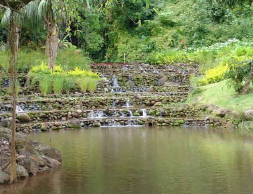 Les jardins de Tahiti