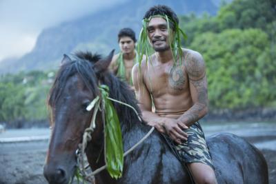 Marquesas - Hiva Oa - Horse