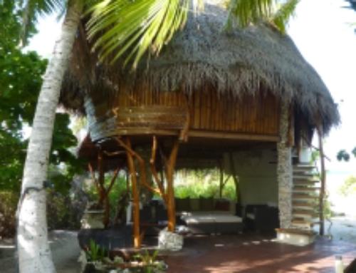Tikehau, The Ninamu Resort differentiates bungalow categories