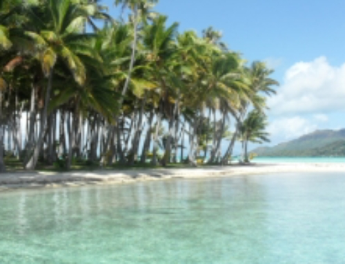 About the Private Excursions with picnic lunch on a motu – Bora Bora, Huahine, Tahaa