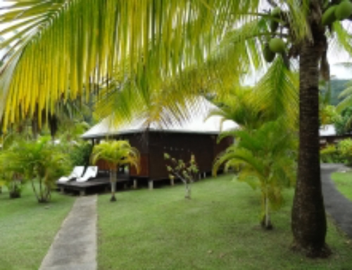 NEW on Raiatea! The family pension Manava