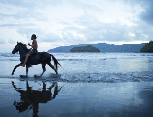Horseback rides in Polynesia