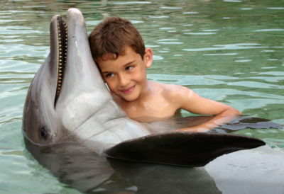 Kid hugging a dolphin at the Moorea Dolphin Center - Intercontinental Moorea