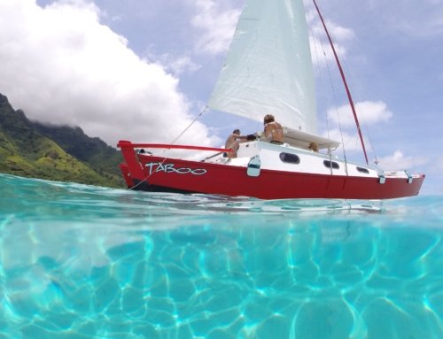 Three excursions to discover on Moorea