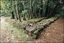 Le Marae Titiroa de la vallée d'Opunohu