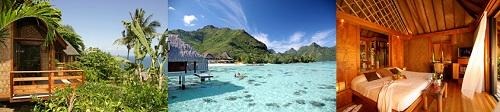 The Polynesian comfort