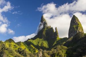 Tagra Marquesas