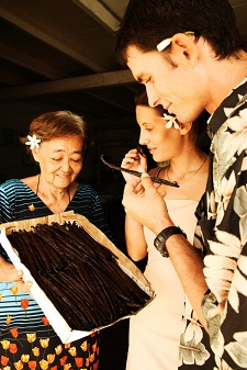 Discovering the Tahitian vanilla