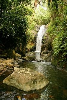 Charming waterfall