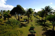 The garden of the Raiatea Lodge Hotel
