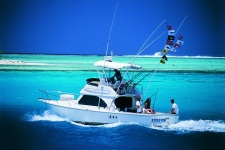 Deep sea fishing aboard the Luna in Bora Bora