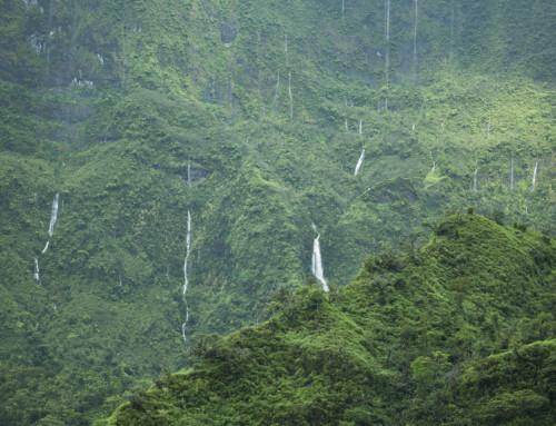 La magie de Tahiti révélée
