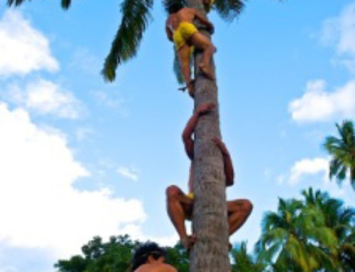 Polynesian traditional activities