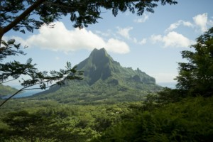 Moorea Island - Rotui view