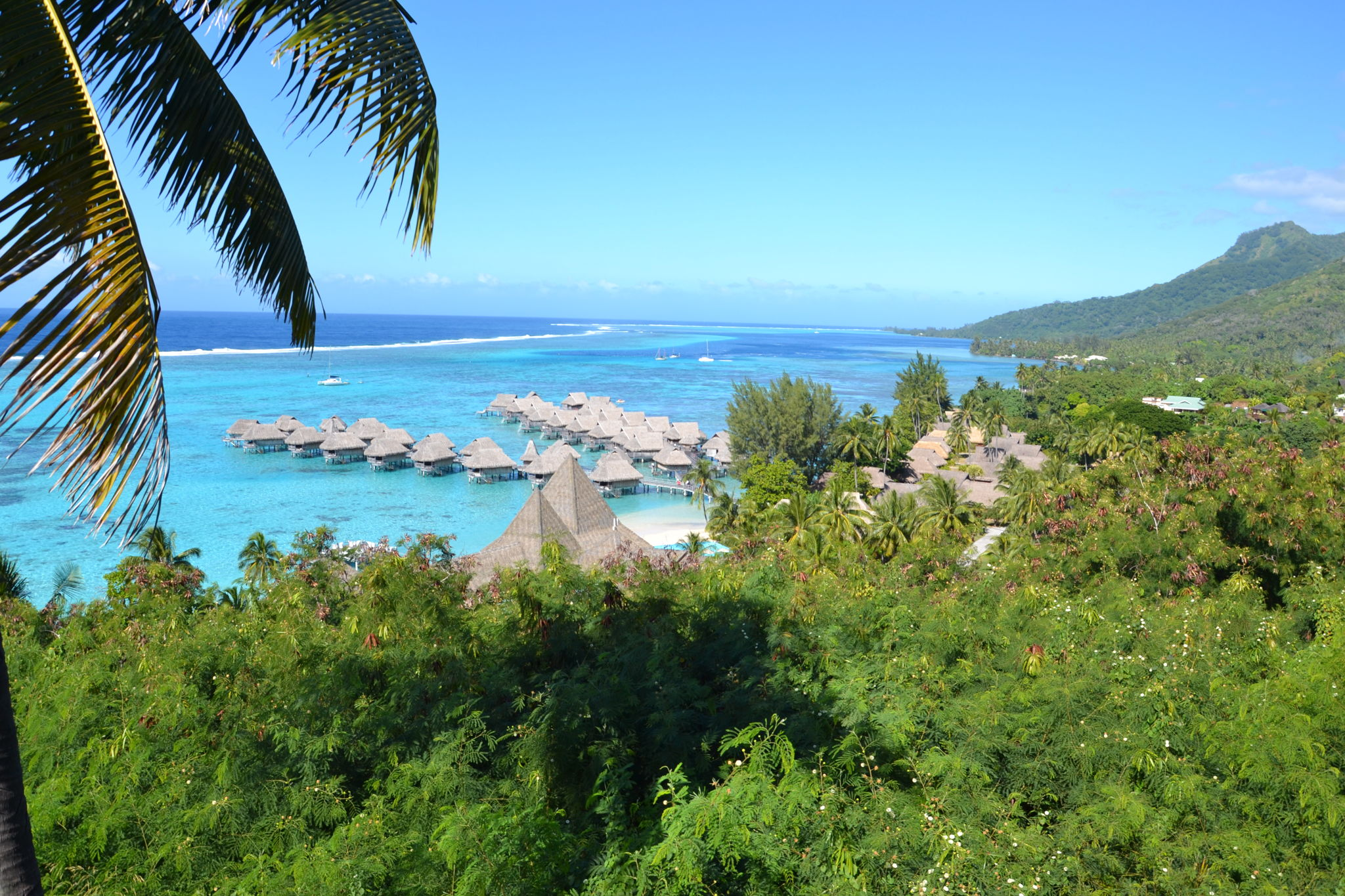 Moorea The Sister Island Of Tahiti Tahiti Nui Travel