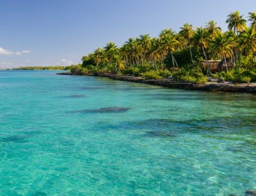 Les Tuamotu