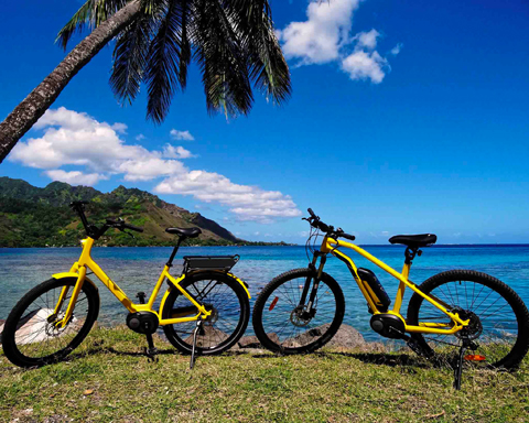 ebikes in front of the lagoon of Moorea