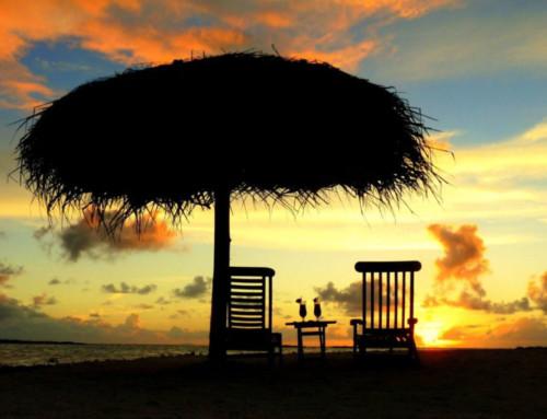 Sunny Polynesia