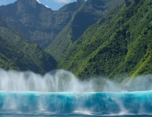 Tahiti – The Majestics